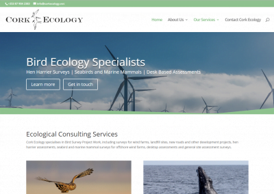 Website Redesign for West Cork based ecological consulting business