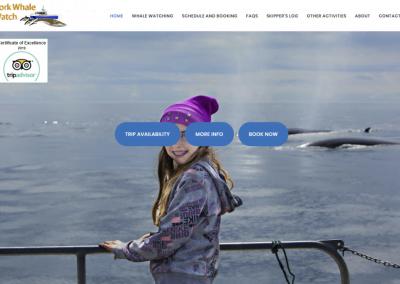 Tourism Business Website Design