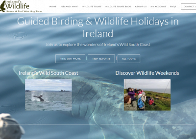 Ireland's Wildlife Tours